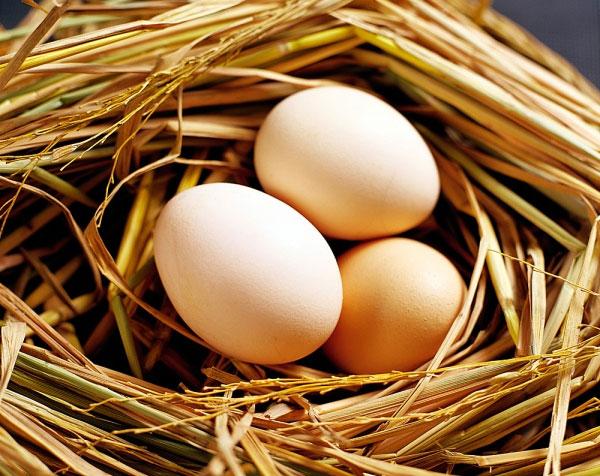 """""""Tuyệt chiêu"""" triệt để mụn đầu đen bằng trứng gà2"""