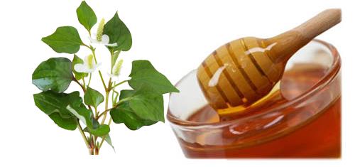 4 công thức trị mụn tuyệt vời bằng lá rau diếp cá 5