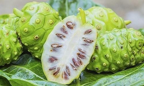 cách trị mụn cóc bằng trái nhàu