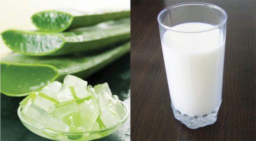 nha đam và sữa tươi